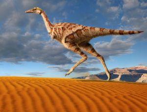 dinosaur-theropod