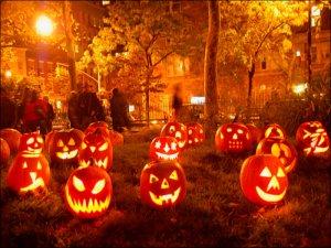 -Autumn-autumn-32310185-800-600